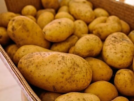cartof-apa-sarata
