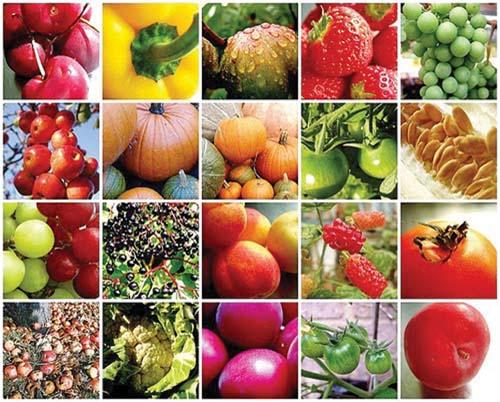 2-fructe
