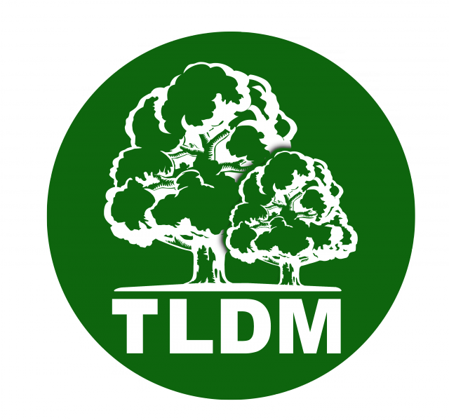TLDM Moldova