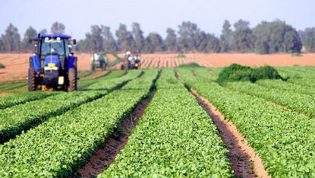 agricultura-eco-ww