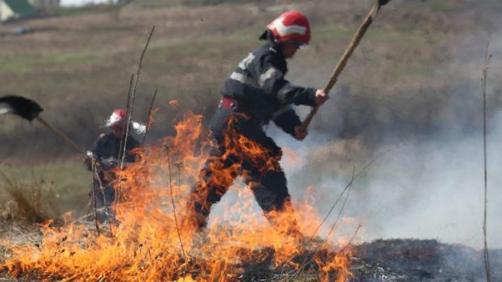 vegetatie ardere