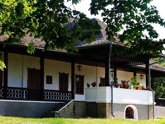 dom-muzej-pisatelya-aleksandra-donicha-5