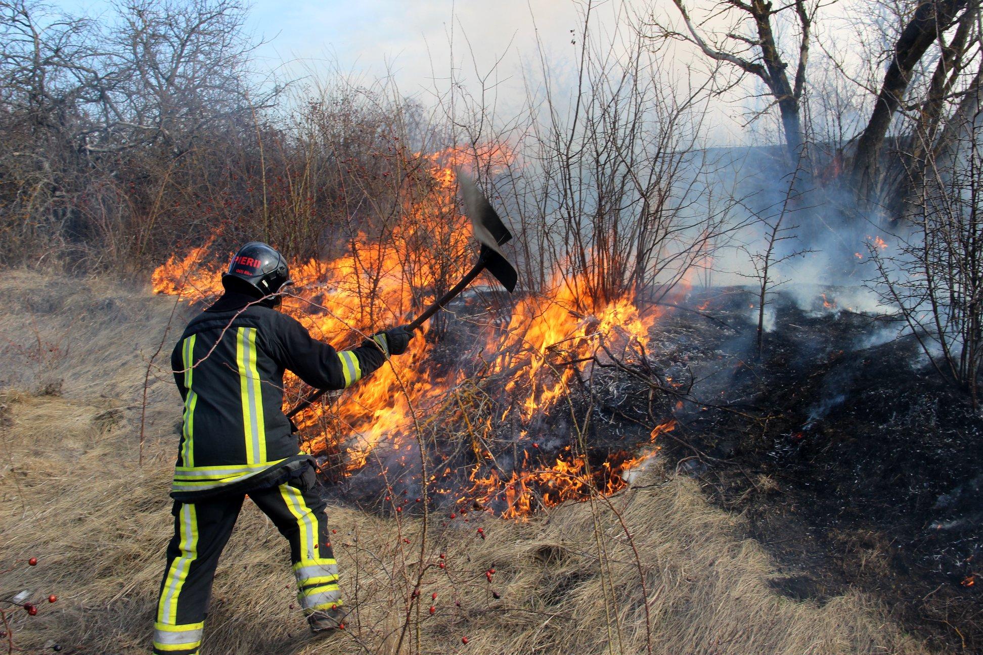 vegetatie ardere arsa