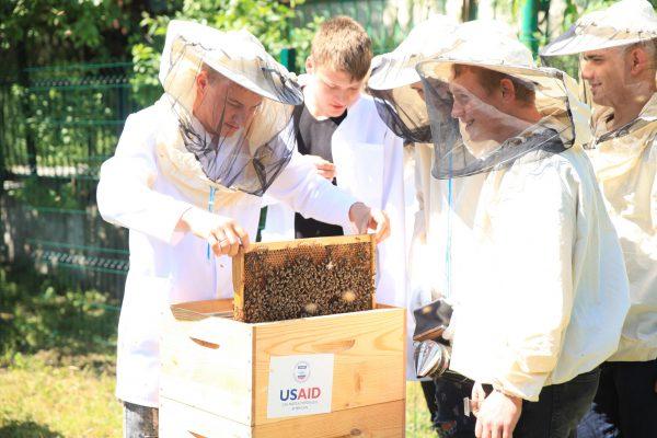 apicultura apm1