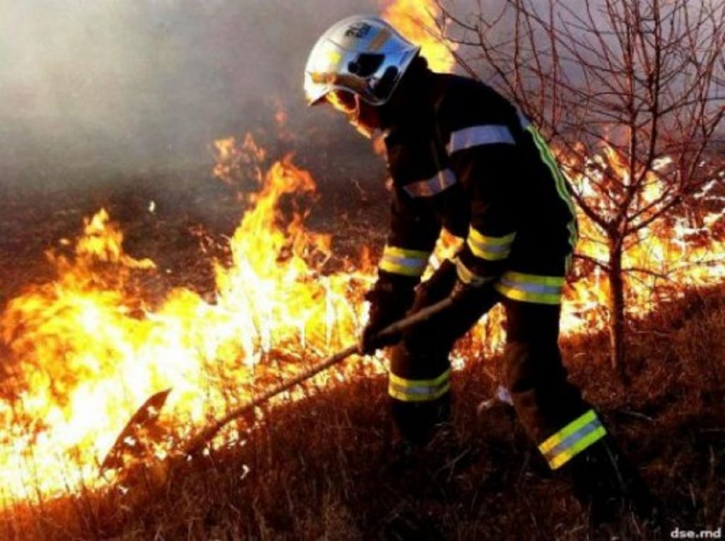 big-72-focare-de-vegetatie-uscata-au-fost-lichidate-de-pompieri-500x374_0