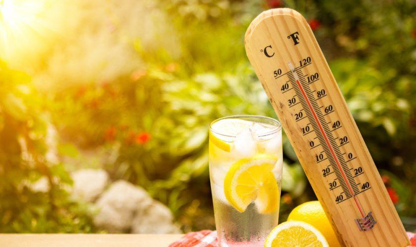 temperatura caldura